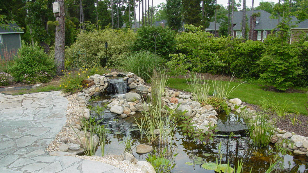 See How Easily You Can Revive Your Landscape